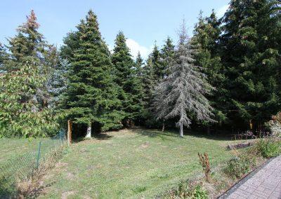 rückseitiger Garten DHH 11a