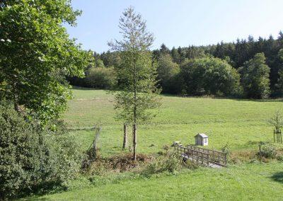 Aussicht vom Wohnhaus nach Osten zum Müllerberg