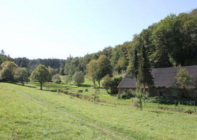 Blick vom Müllerberg in das Wirftbachtal