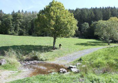 südliche Zufahrt mit Furt durch den Wirftbach