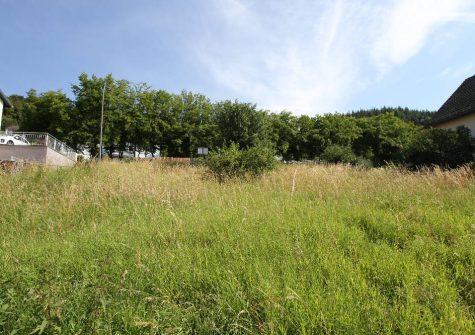 schönes Baugrundstück in attraktiver, sehr sonniger Südhanglage in Gerolstein